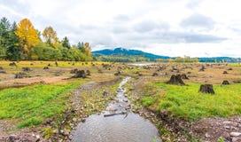 Sense of sunny beach point when low water level in autumn in mt.Rainier area,Washington,usa. Stock Photo