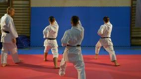 Sensei που εποπτεύει karate τους μαύρους επαγγελματίες ζωνών που εκτελούν το kata στο dojo απόθεμα βίντεο