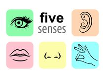 Senses icons. Five human illustrative senses vector illustration, taste and smell or nose sights. Touch or sensory and sight or eye icons, hear or listen royalty free illustration