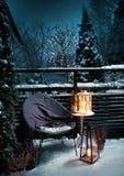 Sensibilità d'annata di Natale di sera del giardino di inverno immagini stock libere da diritti