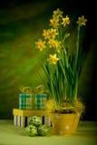 Sensibilità di Pasqua Fotografia Stock