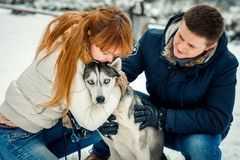 Sensitive close-up portrait of the red head woman kissing lovely siberian husky while man is stroking him. Winter time. royalty free stock images
