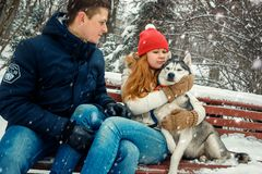 Sensitive family portrait. The attractive red head woman is hugging the siberian dog while sitting with her boyfriend of stock photography