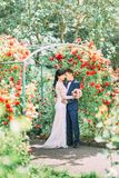 Sensitive outdoor portrait of the cheerful newlywed couple hugging above the red rose arch. Sensitive outdoor portrait of the cheerful newlywed couple hugging Royalty Free Stock Photography
