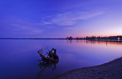 Senso pacifico Fotografie Stock