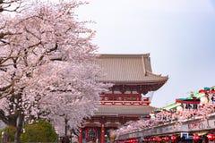 Sensoji寺庙在浅草,东京 库存图片
