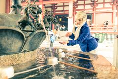 Sensoji寺庙,东京 库存照片