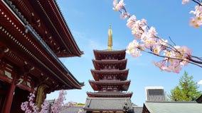 Sensoji Temple, Asakusa, Taito City, Tokyo stock image