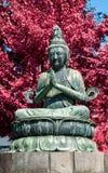 Sensoji Temple Stock Image