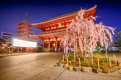 Sensoji Temple in Tokyo Stock Images