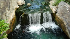 Sensoji Temple Tokyo Japan. Waterfall runs into a Koi pond at Sensoji Temple Tokyo Japan stock video