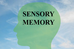 Sensory Memory concept. Render illustration of SENSORY MEMORY script on head silhouette, with cloudy sky as a background vector illustration