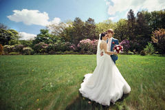 Sensual, beautiful couple of newlyweds hugging in sunny park Stock Image