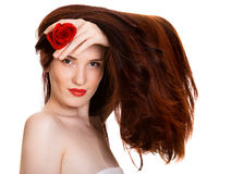 Sensual beautiful woman with red rose. Portrait of sensual beautiful woman with red rose on white background Stock Image