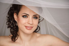 Sensual bride with the veil Royalty Free Stock Photography