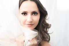 Sensual brunette Royalty Free Stock Photo