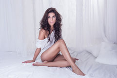 Sensual brunette lady looking at camera Stock Photos