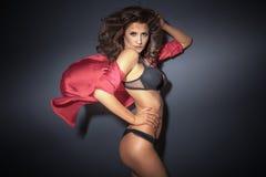 Sensual brunette lady posing Stock Image