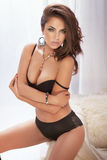 Sensual brunette woman in lingerie Royalty Free Stock Photo