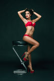Sensual brunette woman with perfect body posing in lingerie, holding red rose. Royalty Free Stock Photos