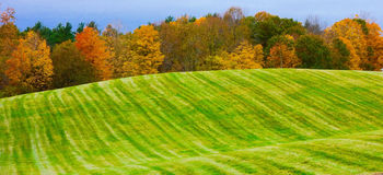 Sensual, colorful landscape, happy, innocent, childlike Stock Images