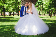 Sensual embrace bride and groom Royalty Free Stock Photos