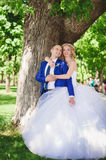 Sensual embrace bride and groom Royalty Free Stock Images