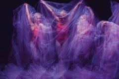 Sensual and emotional dance of beautiful ballerina Stock Images