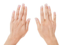 Sensual female hands isolated on white Stock Photos