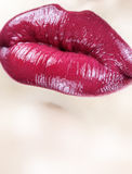 Sensual female lips Royalty Free Stock Images