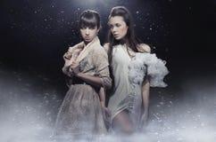 Sensual girls posing. Two beautiful sensual girls posing Royalty Free Stock Images