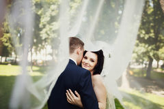 Sensual kiss of bride and groom under veil Stock Photo