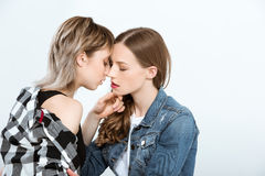 Sensual lesbian couple able to kiss isolated on grey. Young sensual lesbian couple able to kiss isolated on grey Stock Photo