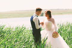 Sensual married couple at sunny day. In grass Stock Photography