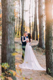 Sensual moment of romantic newly married couple holding each other in the autumn pine forest Royalty Free Stock Photography