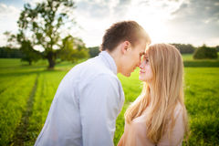 Sensual outdoor portrait of young stylish couple posing in field Stock Photography