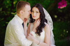 Sensual portrait of the bride and groom are embracing, love, family, marriage, relationships, life style Royalty Free Stock Image