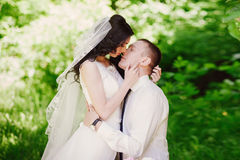 Sensual portrait of the bride and groom are embracing, love, family, marriage, relationships, life style Stock Photos