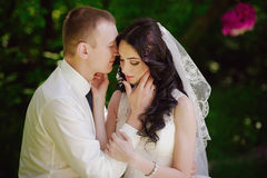 Sensual portrait of the bride and groom are embracing, love, family, marriage, relationships, life style Royalty Free Stock Images