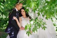 Sensual portrait of the bride and groom are embracing, love, family, marriage, relationships, life style Stock Images