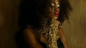 Sensual portrait of sexy african american female model with glossy golden makeup posing to the camera on the textured Stock Photos