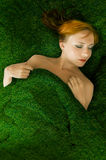 Sensual red haired girl in a grass bed Stock Image