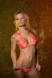 Sensual wet caucasian woman. Wet caucasian woman wearing pink bikini in her seductive pose in a colorful backdrop Stock Photography