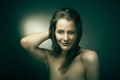 Sensual woman with beautiful long brown hairs Stock Image