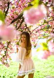 Sensual woman at blossoming sakura flower in spring. Sakura flower beauty in nature. Skincare and summer concept. Womens Royalty Free Stock Photos