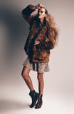 Sensual woman in brown fur coat Royalty Free Stock Images