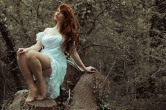 Sensual Woman in Dress Posing at the Woods Stock Images