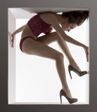 Sensual woman fitted in a box Royalty Free Stock Images