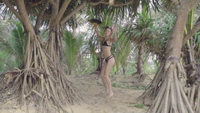 Sensual woman with hand fan on a beautiful summer day between palm trees stock video
