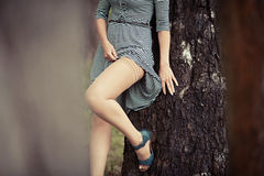 Sensual woman near a tree. Young woman near the tree bares her leg Stock Image
